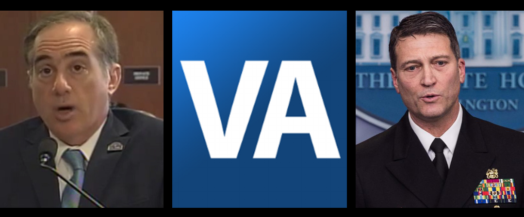"Should the ""General Practitioner"" business of the VA be privatized?"
