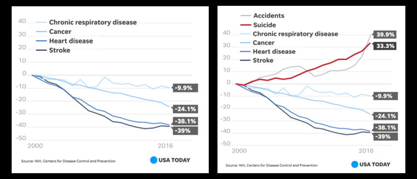 "NEWS & COMMENTARY:   ALL of ""leading causes of death"" in the US have declined since 1999 except two — suicide & accidents"